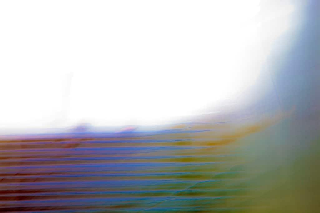 _MG_2058-flight-of-colour